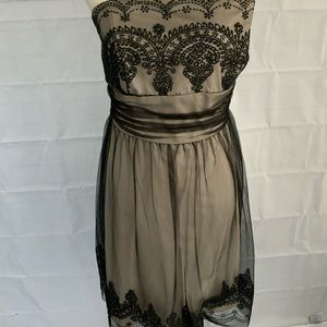 STRAPLESS  formal ~David's bridal dress